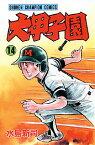 大甲子園(14) (少年チャンピオンコミックス) [ 水島新司 ]