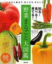 【送料無料】野菜まるごと大図鑑