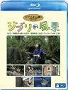 ジブリの風景 宮崎作品が描いた日本/宮崎作品と出会うヨーロッパの旅【Blu-ray】 [ 鶴田真由 ]