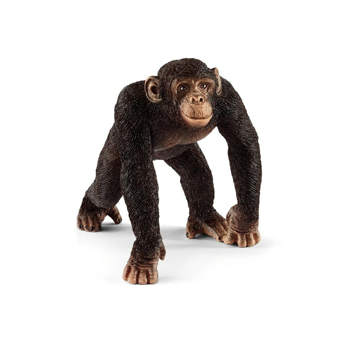 14817 チンパンジー(オス) 【シュライヒ】 Wild Life/ワイルドライフ