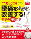 NHKガッテン! 腰痛をラクに改善する!科学の特効ワザ (生活シリーズ...