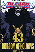 BLEACH(43)