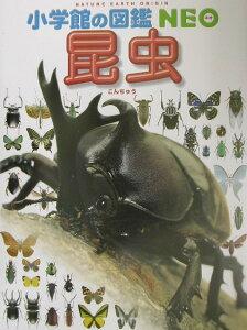 【送料無料】昆虫 [ 小池啓一 ]