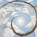 ナポレオンフィッシュと泳ぐ日 (完全生産限定)【アナログ盤】 [ 佐野元春 ]