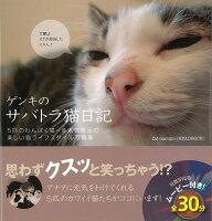 【バーゲン本】ゲンキのサバトラ猫日記 DVD付