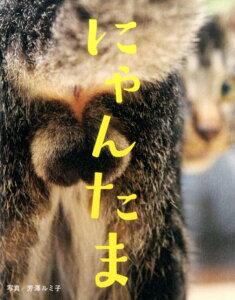 去年一番ウケた猫本。どのページを開いてもにゃんたまオンパレードのほのぼの写真集♪