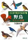 【送料無料】ひと目で見分ける287種野鳥ポケット図鑑