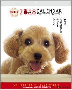 メッセージ カレンダー