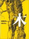 木 (こどものとも傑作集) [ 佐藤忠良 ]