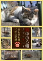 谷中のら猫ラプソディー〜だんだん猫10年の記録〜