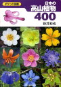 日本の高山植物400 ポケット図鑑 [ 新井和也 ]