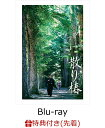 【先着特典】散り椿(特製クリアファイル付き)【Blu-ray...