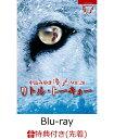 【先着特典】夜会VOL.20「リトル・トーキョー」(しおり付きポストカード付き)【Blu-ray】 [ 中島みゆき ]