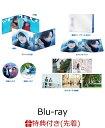 【先着特典】雪の華 ブルーレイ プレミアム・エディション(2枚組)(初回仕様)【Blu-ray】+オリジナル・チケットホルダー(カレンダー付き) [ 登坂広臣 ]