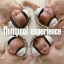 experience [ flumpool ]
