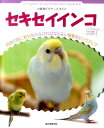 【送料無料】セキセイインコ