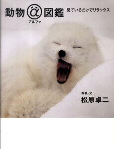 動物アルファ図鑑 [ 松原卓二 ]
