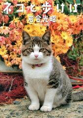 【送料無料】ネコと歩けば [ 岩合光昭 ]