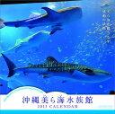 【送料無料】【ハゴロモ_ポイント5倍】沖縄美ら海水族館 2013 カレンダー