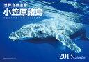 【送料無料】世界自然遺産・小笠原諸島 2013カレンダー