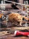 【送料無料】待ちつづける動物たち