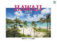 魅惑する、ハワイの風景カレンダー 壁掛け(2019)