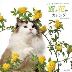 【楽天ブックスならいつでも送料無料】猫と花のカレンダー(2016)