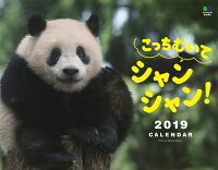 こっちむいてシャンシャン!カレンダー(2019)