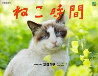 ねこ時間カレンダー 壁掛け(2019)