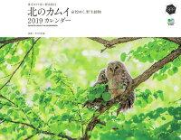 東京カメラ部×エイ出版社 北のカムイ 命煌めく、野生動物カレンダー 壁掛け(2019)