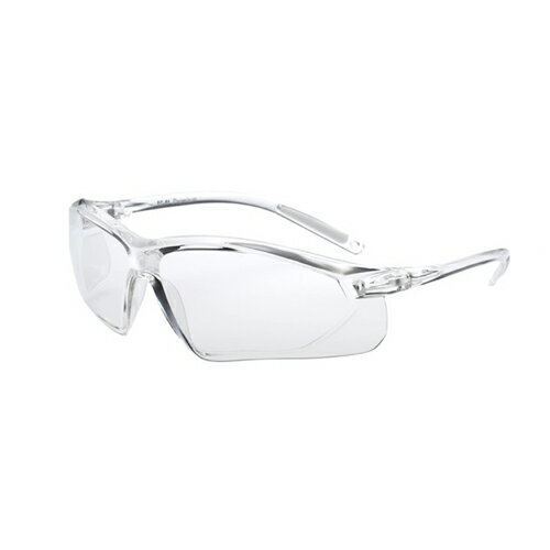 EYE CARE GLASS PREMIUM (保護メガネ) EC-01S Premium