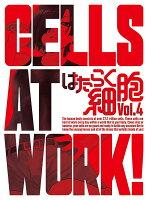 はたらく細胞 4(完全生産限定版)