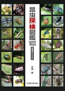 【楽天ブックスならいつでも送料無料】昆虫探検図鑑1600 [ 川邊透 ]