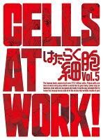 はたらく細胞 5(完全生産限定版)