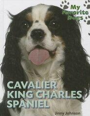 Cavalier King Charles Spaniel [ Katie Dicker ][楽天ブックス]