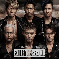WILD WILD WILD (CD+DVD)