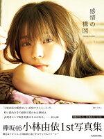 小林由依1st写真集「感情の構図」