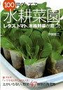 【送料無料】100円グッズで水耕菜園