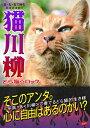 猫川柳(どら猫☆ロック)