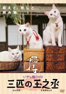 【楽天ブックスならいつでも送料無料】いやし猫 DVD 猫侍 三匹の玉之丞