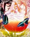 絶対迷宮 秘密のおやゆび姫 初回豪華版