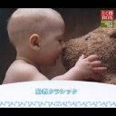 【楽天ブックスならいつでも送料無料】とく得BOX::胎教クラシック [ (オムニバス) ]