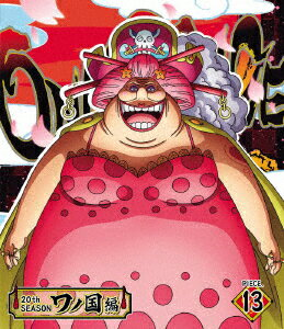 ONEPIECEワンピース20THシーズンワノ国編PIECE.13 Blu-ray  山口勝平