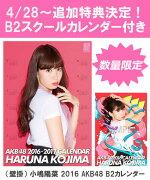 (壁掛) 小嶋陽菜 2016 AKB48 B2カレンダー