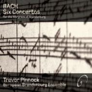 【送料無料】【輸入盤】ブランデンブルク協奏曲(全6曲) ピノック&ヨーロピアン・ブランデン...