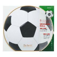 ミドリ 色紙 丸形 カラー色紙 サッカーボール柄 33196006