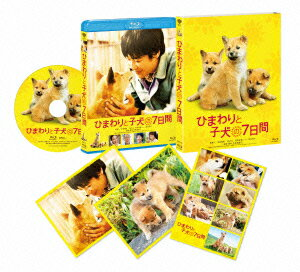 【楽天ブックスならいつでも送料無料】ひまわりと子犬の7日間【Blu-ray】 [ 堺雅人 ]