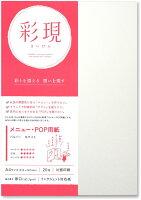 PCM竹尾 プリンタ用紙 彩現 メニュー・POP用 A4 パルパー ホワイト 1741998