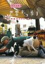 岩合光昭の世界ネコ歩き 続々番組ガイドブック [ 岩合光昭 ]