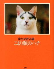 【送料無料】幸せを呼ぶ猫こまり顔のハチ